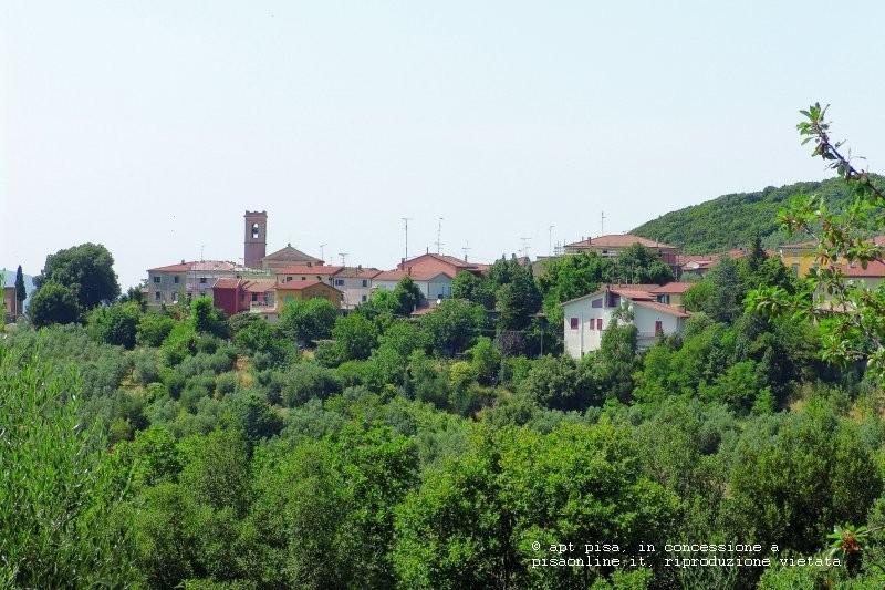 colline_pisane