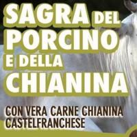 Sagra del porcino a Castelfranco di Sotto