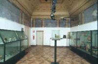 Collezioni Egittologiche dell'Universit� di Pisa