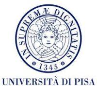 Università Pisa, eccellenza nella ricerca